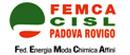 Logo FEMCA