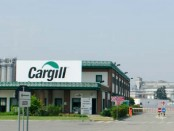 Cargill-di-Castelmassa
