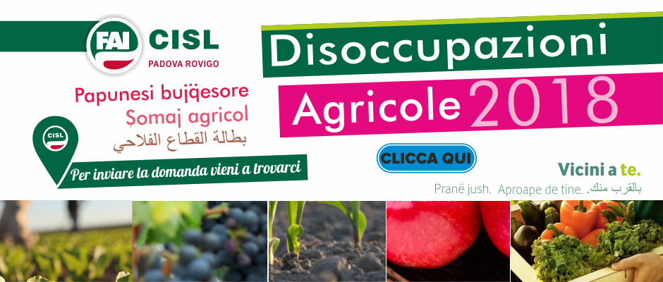 BANNER DS AGRICOLE_SITO CISL PDRO